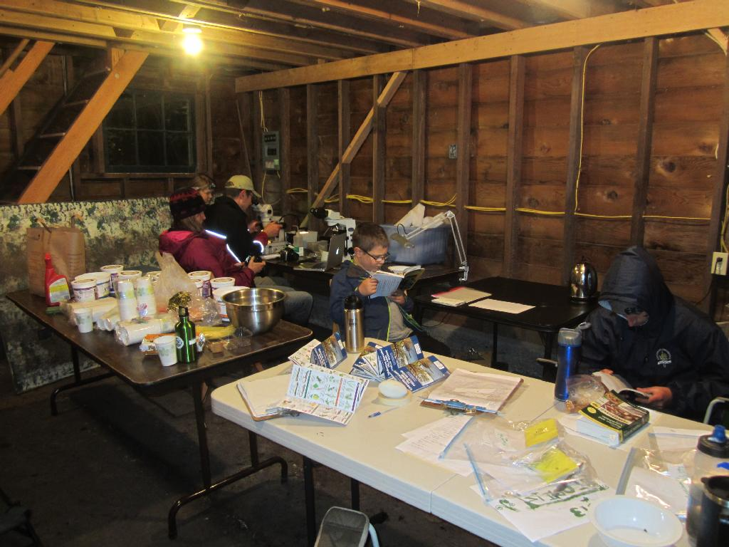 Basecamp team identifying species at 1 a.m. photo by: Bianca Perla