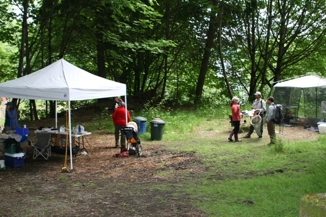 Basecamp for the BioBlitz at Neill Point. photo by Ed Otto
