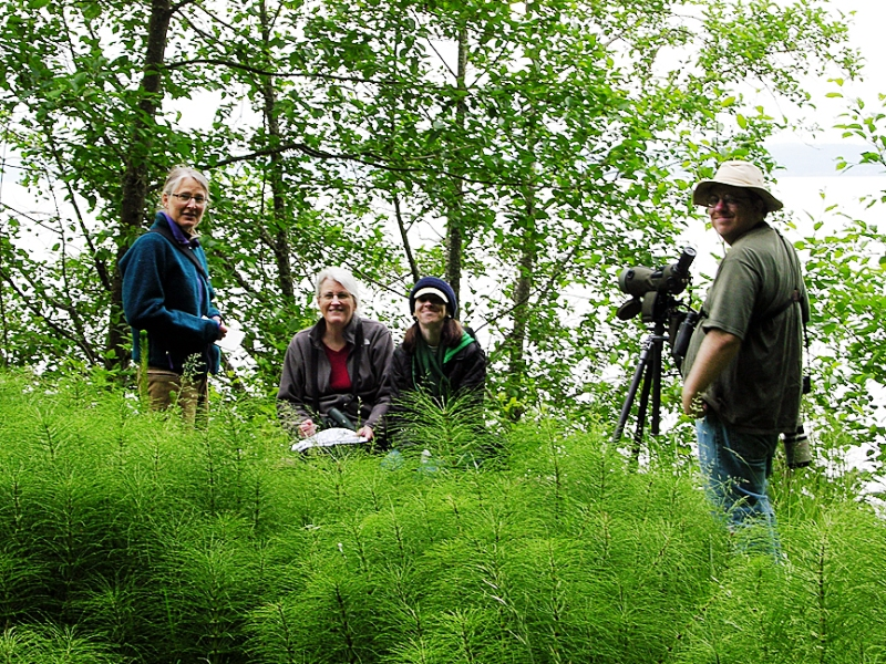 Birders Karen Fevold, Sue Trevathon, Harsi Parker, and Ezra Parker. photo by: Richard Rogers.