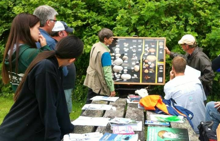 Vashon Nature Center - Naturalist Training