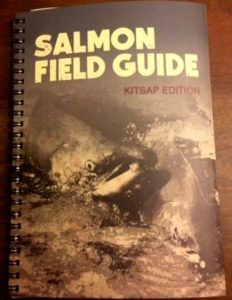 vnc_salmon_fg