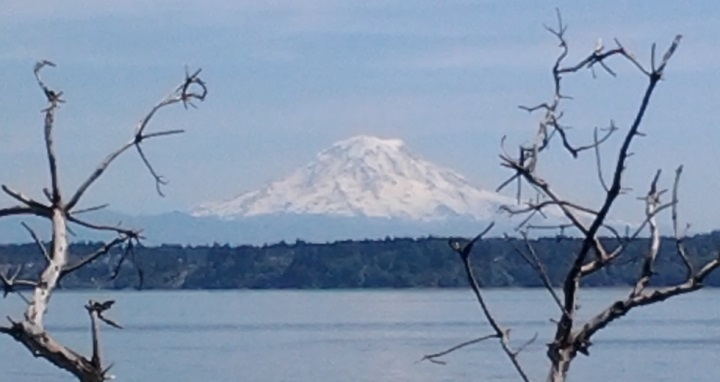 Mount Rainier from Maury Natural Area. photo by: Kathy Bosler