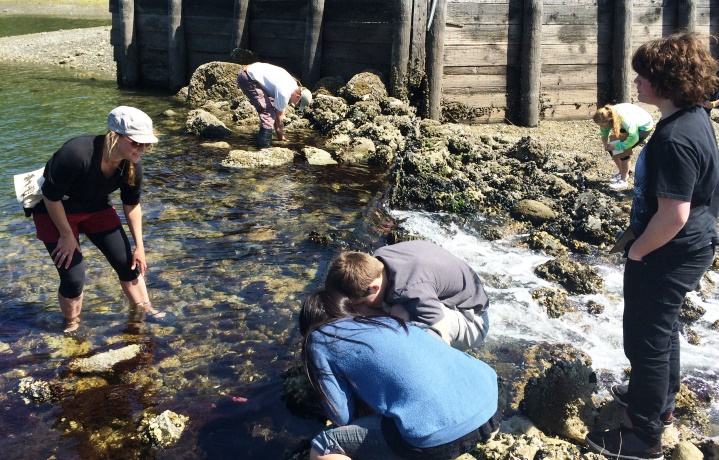 VHS students help VNC scientists monitor seastars at Raab's lagoon.